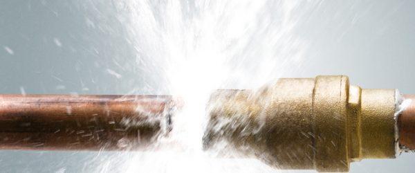 Festpreisbad Wassermelder Wasserschaden 03